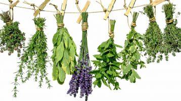 Herbs & Fresh Produce